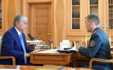 The Head of State receives Nurlan Yermekbayev, Minister of Defence